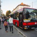 Primul oraş din România care a introdus autobuze școlare